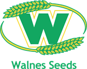 Walnes Seeds
